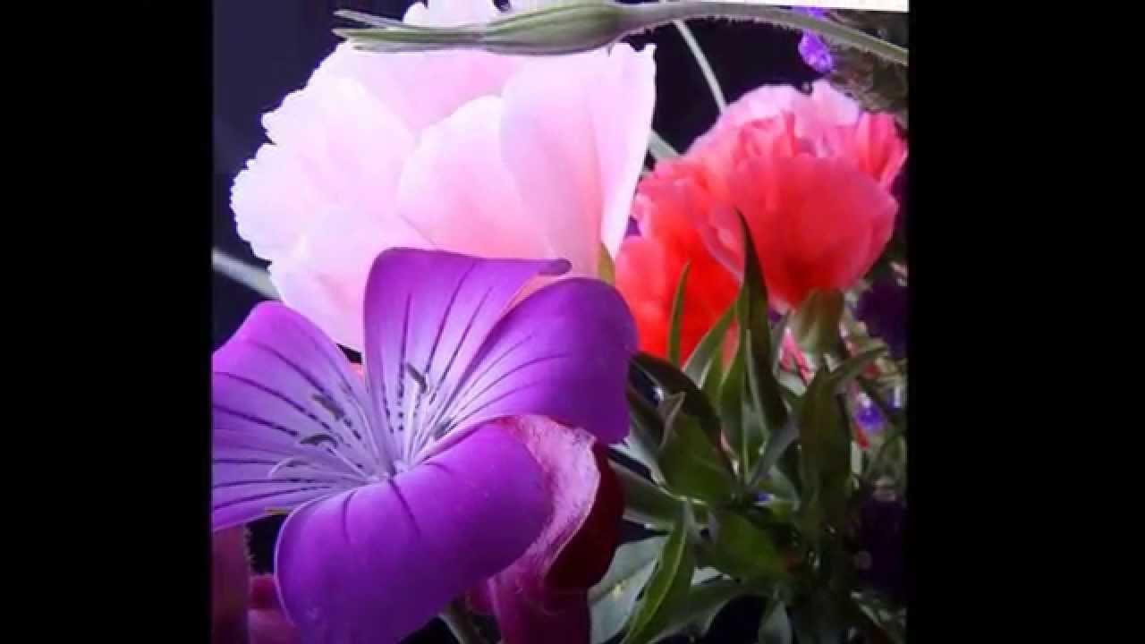 Estremamente Breve BUONGIORNO con i fiori - YouTube BQ22