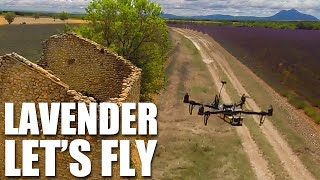 Flite Test - Lavender Let