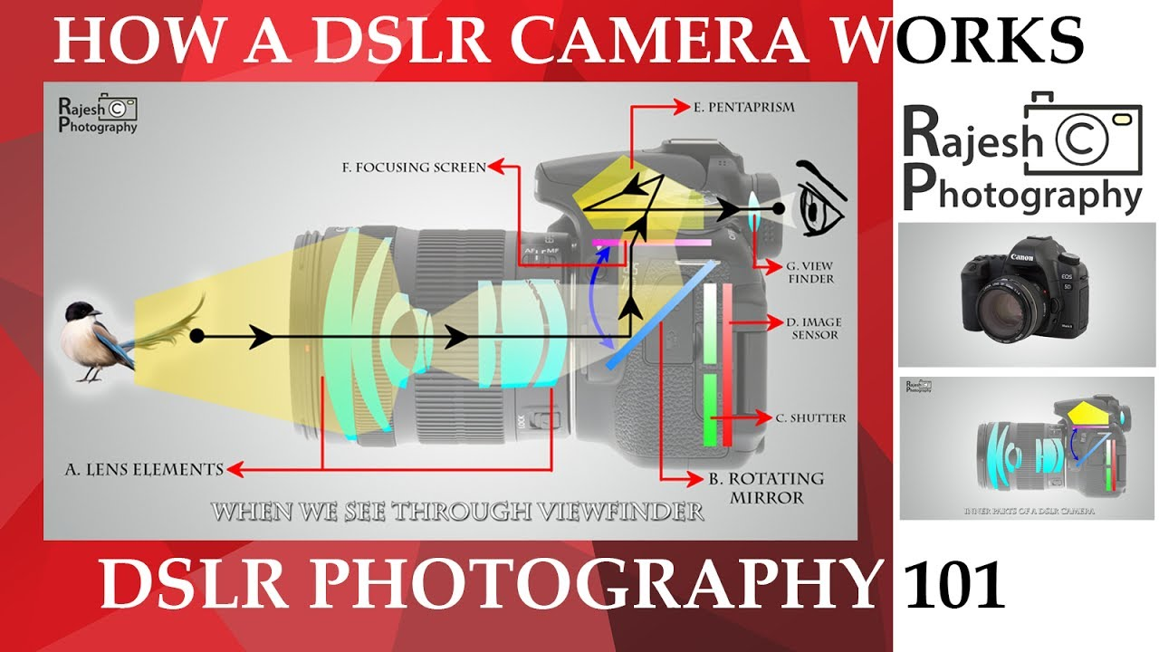 Camera How Dslr Camera Works how a dslr camera work youtube work