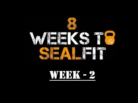 8 Weeks To Sealfit - Week 2