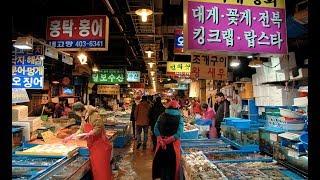 كوريا الشمالية تطلب مساعدة الأمم المتحدة لمواجهة نقص الغذاء