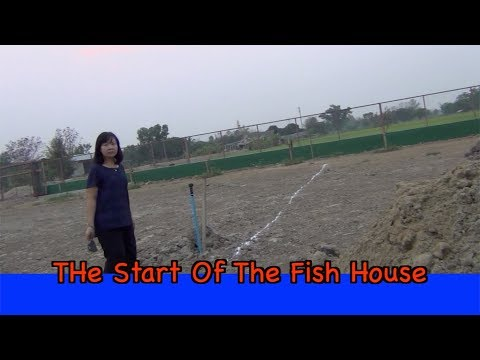 THe Start Of The Fish House