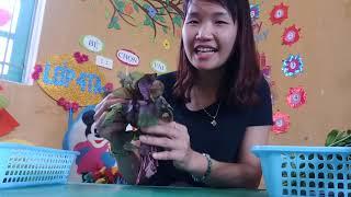 Trò chuyện với trẻ về một số loại rau cô giáo Đỗ Phương