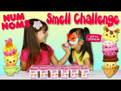 NUM NOMS BLINDFOLDED SMELL CHALLENGE! Guess The Smell!
