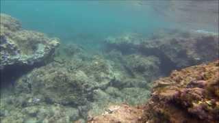 Gopro Hero 3 Black Edition Diving Snorkeling In Spain Majorca Part 3
