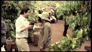 NESCAFÉ Plan - Yêu lắm hạt cà phê 30s (South)