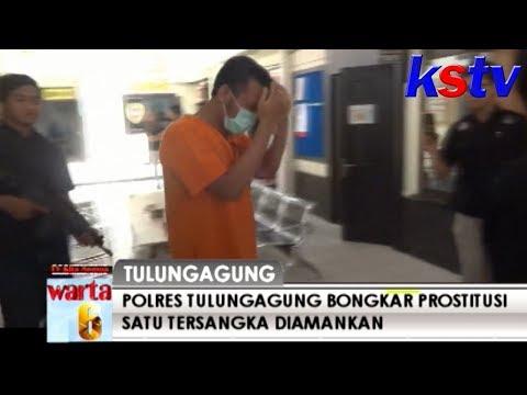 TULUNGAGUNG - POLRES TULUNGAGUNG BONGKAR PROSTITUSI SATU TERSANGKA DIAMANKAN Mp3