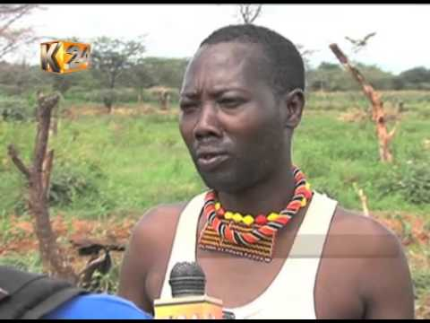 Pokot youth turn from cattle rustling to farming