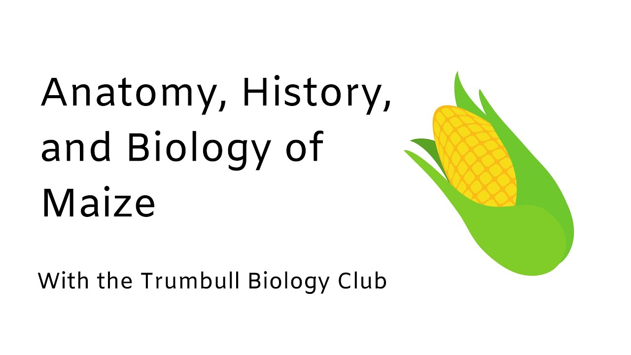 Happy Thanksgiving from TNAC and the Trumbull Students' Biology Club!