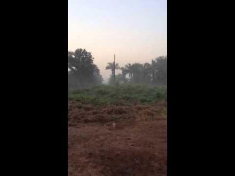 The sound of dawn in Catio, Guinea-Bissau. December 2013