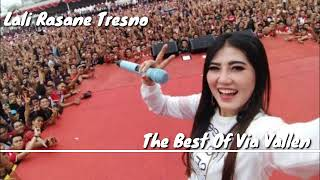 Best Of Via Vallen Bersama Om SERA DSA Record OaOe