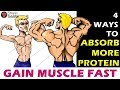 4 ways to Absorb MORE Protein to GAIN MUSCLE fast | Bodybuilding Muscle gain diet Tips