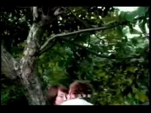 Jay Chou- Qing Tian 晴天 (with lyrics) MV