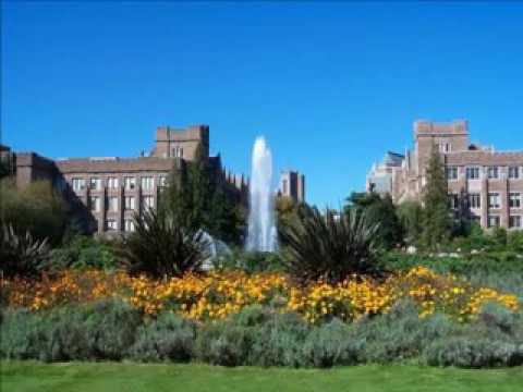 Top 10 Universities in USA for Computer Science & Engineering-3