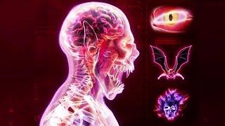 МИР ВО ВЛАСТИ ВАМПИРОВ ► Plague Inc Evolved |24|