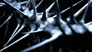 Wumpscut - Thorns (distant vocals version)