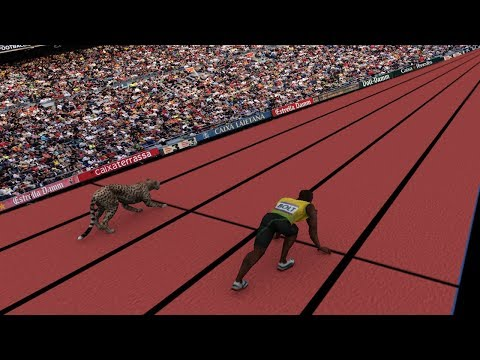 Speed Comparison: Average Person VS Usain Bolt & Cheetah