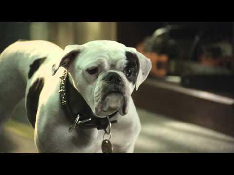 SANTA PAWS 2: LOS CACHORROS DE SANTA - Trailer