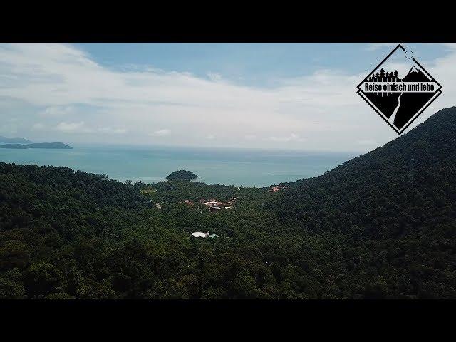 Barfuß durch den Dschungel • Vlog #62