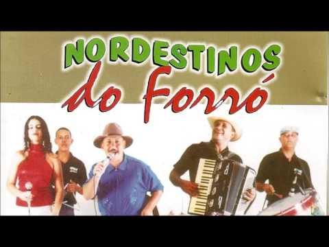 As Melhores Músicas de Nordestino do Forró - 39 Grandes Sucessos (Músicas Juninas - Seleção 2016)