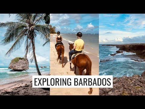 BARBADOS TRAVEL VLOG: JON AND I EXPLORE THE ISLAND (Horseback Riding, Animal Flower Cave)