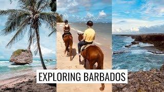 CARIBBEAN TRAVEL VLOG: JON AND I EXPLORE BARBADOS (Horseback Riding, Animal Flower Cave)