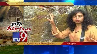 Udayagiri's hidden treasure mystery! || Nellore District || Nidhi Rahasyam - TV9