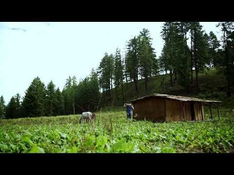 Free nepali song 123
