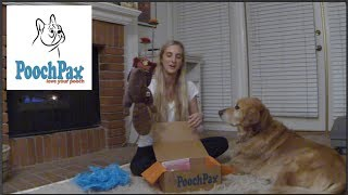 PoochPax - The monthly Subscription Box of Yummy Treats and Fun Toys for your Pooch! thumbnail