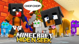 Minecraft HIDE N SEEK - DONUT TURNS INTO A TOM CAT!!!! - donut the dog