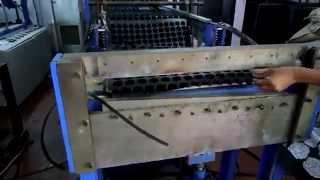 plug tray