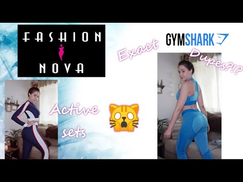 Under $20 Gym Shark Dupes? | Fashion Nova Active Wear Review & Try On