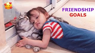 🐱 The Most Funny & Adorable Cats 😂 Too Funny Too Cute - Pets Paws TV Video 2020