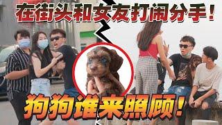 在檳城街頭和女友鬧分手!狗狗撫養權歸?路人到底會支持誰?
