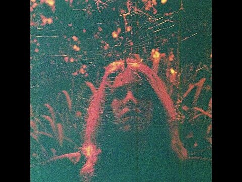 Turnover - Peripheral Vision (2015) FULL ALBUM