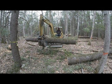 Clearing Land For A House