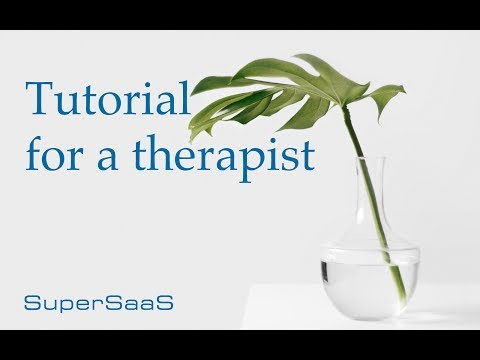 Building a SuperSaaS schedule for a therapist