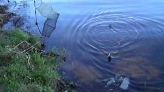 рыбалка на о святое место