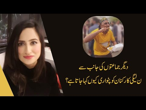 """Maleeha Hashmi: Why PMLN Supporters are called """"Patwari""""?"""