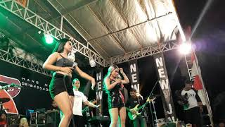 Bojo ketikung live in Kendal Gernex's Comunity duet goyang auuhh Desi Tata Shintya Riske  New JNR