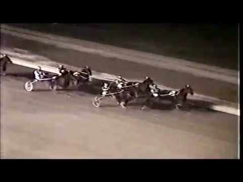 1984 Roosevelt Raceway MENDY Norman Dauplaise