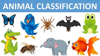 Classification Of Animals || Types Of Animals || Animal Groups || Science Videos