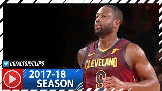 Dwyane Wade Full Highlights vs Knicks (2017.11.13) - 15 Pts, 8 Reb, HUSTLE!