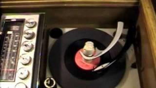 The Trashmen - Surfin Bird ( 1963 )