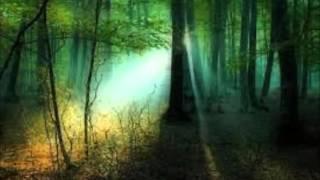 MENDELSSOHN - Sogno di una notte di mezza estate - Notturno