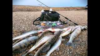 ЗАПРЕЩЕННАЯ СИЛИКОНКА ВОТ ЭТО ОНА ЛОВИТ Рыбалка в Казахстане Рыбалка 2021