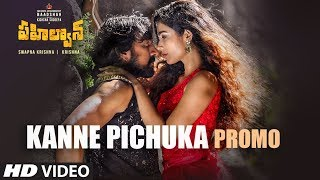 Kanne Pichuka Song Promo | Pahalwan Telugu | Kichcha Sudeepa | Krishna | Arjun Janya