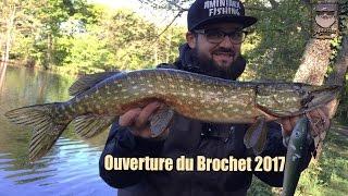 Ouverture du Brochet 2017- Pêcher au bigbait, ma nouvelle passion...
