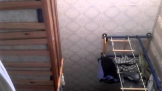видео как правильно отжиматься