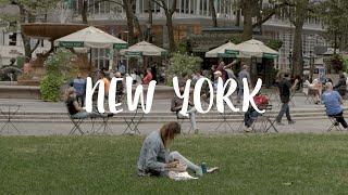 뉴욕 프리랜서 일상 브이로그 / 일하고 공부하고 바쁜하…